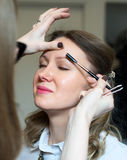 Make-up artist combing eyebrow. Stock Photos