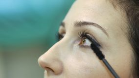 Make-up artist doing a model`s makeup at the salon stock footage