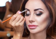 The make-up artist paints eyebrows to a beautiful brunette girl royalty free stock photography