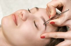 The make-up artist plucks her eyebrows from a young woman in a beauty salon stock image