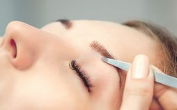 The make-up artist plucks her eyebrows from a young woman in a beauty salon royalty free stock images