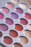 Make up artists lipstick palette Stock Photography