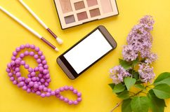 Make up beauty and fashion background. royalty free stock image
