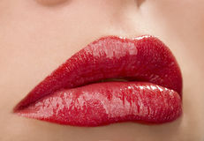 Make up of bright lips Stock Image