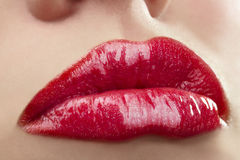 Make up of bright lips Royalty Free Stock Image