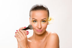 Make up. Brown sleek hair beautiful woman with fan brush close to face looking at the camera. Stock Images
