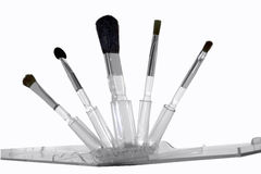 Make-Up Brush Kit. Five piece black bristled, make-up brush kit, in clear acrylic case - isolated on white Royalty Free Stock Photo