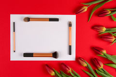 Make up brushes arranged on white blank paper and spring flowers tulips on red background. Top view Stock Photos
