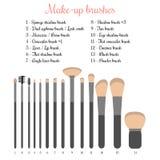 Make-up brushes set. Vector illustration of 14 make-up brushes with names royalty free illustration