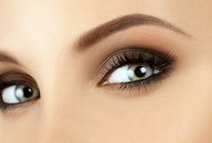 Make-up. Eyebrow Makeup. Eyes stock image