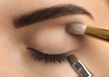 Make-up. Eyebrow Makeup. Stock Photo