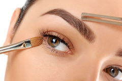 Make-up. Eyebrow Makeup. Eyes Royalty Free Stock Images