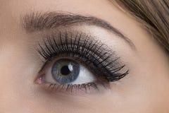 Make-up. Makeup. Make-up. Applying Mascara. Long Eyelashes royalty free stock photography