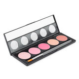 Make-up palette isolated Royalty Free Stock Image