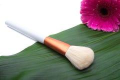 Make-upborstel op groen blad Royalty-vrije Stock Afbeelding