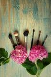 Make-upborstels en hydrangea hortensia op abstracte houten blauwe backgro Royalty-vrije Stock Fotografie