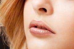 Make-upmakro des schönen Porträts der jungen Frau natürliches Lippen stockbild
