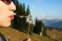 Make a wish Stock Image