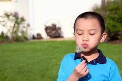 Make a Wish Stock Images