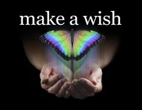 Make a Wish on this Beautiful Rainbow Butterfly. Male cupped hands emerging from black background with a large rainbow coloured butterfly rising upwards towards royalty free stock photos