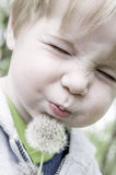 Make a wish. Little boy closing his eyes, and blowing on a dandelion Royalty Free Stock Photo
