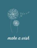 Make a wish Stock Photos
