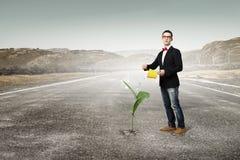 Make your income grow Royalty Free Stock Image