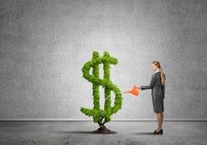 Make your money grow Stock Photo