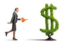 Make your money grow royalty free stock photos