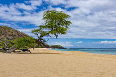 Makena Big Beach nära Wailea Maui Hawaii USA Arkivbilder
