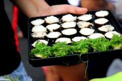 Makend Japanse sushi traditioneel - Japans voedsel Royalty-vrije Stock Foto's