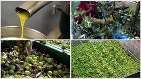 Makend olijfolie met olijven in molen - collage stock footage