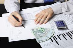 Makend zaken analyseren Stock Afbeelding