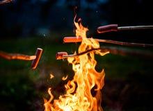 Makende en kokende Hotdogworsten over open kampbrand stock foto