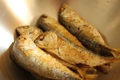 Makeral thaïlandais dans la cuvette d'acier inoxydable image stock