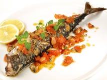 Makerel - grillad fisk med tomaten arkivfoto