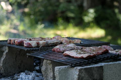Makeshift barbecue. On the forest in New York Stock Images