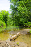 Makeshift bridge over the wooden bar. The bridge over the Creek nature background Stock Images