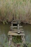 Makeshift bridge swamp creek Royalty Free Stock Photography