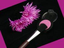 makeup θέστε Στοκ Εικόνες