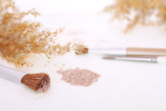 Makeup 7M. Makeup shot with brushes powder and soft tones royalty free stock photo