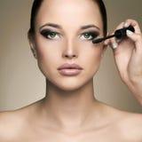 Makeup artist applies mascara. Beautiful woman face. beauty girl with make-up Stock Photos