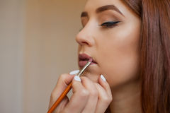 Makeup artist apply makeup and color lipstick with a professional brush in a beauty salon. Professional skin care stock images
