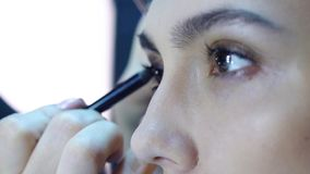 Makeup artist apply makeup to an attractive young women. stock footage