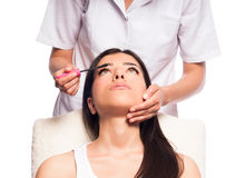 Makeup Artist Applying Mascara. Isolated photo of a professional makeup artist, applying mascara on a girl face Stock Image