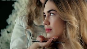Makeup artist after applying makeup. Shows her work to audience, model is young girl, Master Class, close up stock video footage