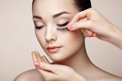 Makeup artist glues eyelashes Royalty Free Stock Photo
