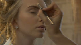 Makeup artist leads the eye stock video