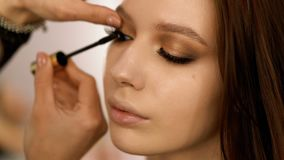 Makeup artist making eye-makeup for young model 4k. Realtime stock video