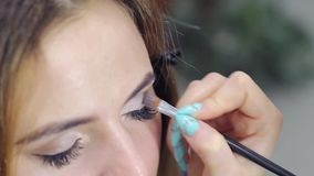 Makeup artist paints the model stock video footage